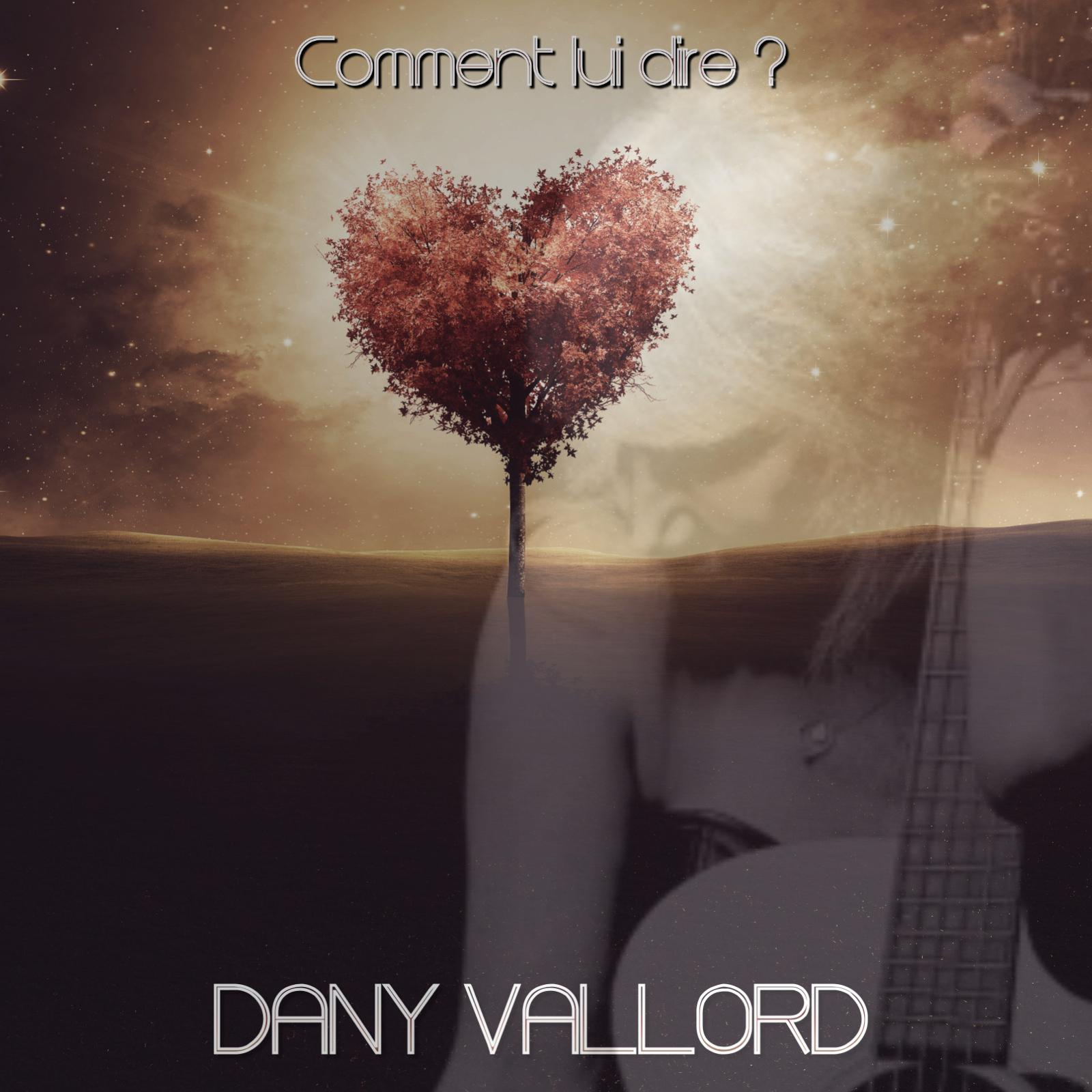 Dany Vallord - Comment lui dire ?